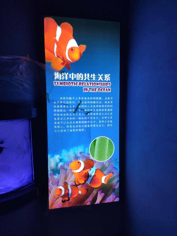 龙门海洋馆软膜灯箱施工完成
